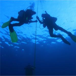 Dive-TRaining-89